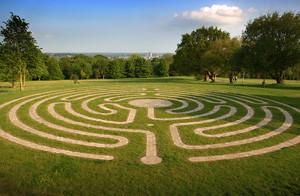 Sunlit labyrinth cut into a big lawn